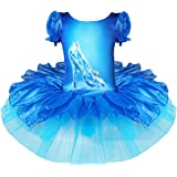 FEESHOW Girls' Crystal Shoes Print Leotard Ballet Tutu Dance Dress Party Costume