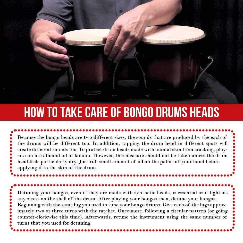 Hip Bongo Drums Bongo Heads Replacement Pack 7.2 and 8.1 Instruction Installation Provided Percussion Instruments Skin with Natural Ethically Sourced Rabbit Skin Hides