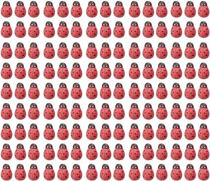 HEALLILY 200 pz mini coccinelle in legno coccinella ornamenti in legno in miniatura ornamenti per fai da te fai da te giardino delle bambole casa delle bambole muschio paesaggio decorazione della casa