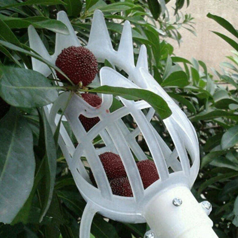 8 Bolange Fruit Picker Fruit Berry Picker Picking Tool Garden Fruit Picker Harvester Fruit Catcher Fruit Picking Head Basket White 20 8cm