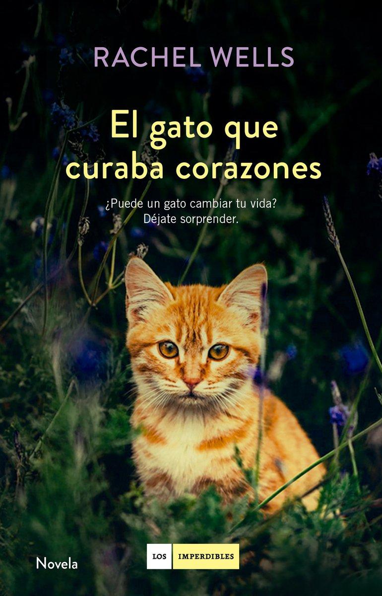 El gato que curaba corazones: Rachel Wells: 9788416634477: Amazon.com: Books