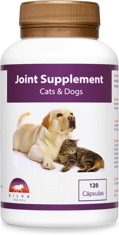 Kilva Suplemento antiinflamatorio Natural para Perros y Gatos, 120 cáp. Condroprotector. Condroitina, Glucosamina, Ácido hialurónico, Cúrcuma, MSM, Manganeso