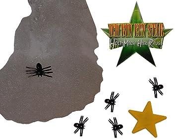 Unbekannt Deko Stern Mit 5 Spinnen Spinnennetz Ich Bin