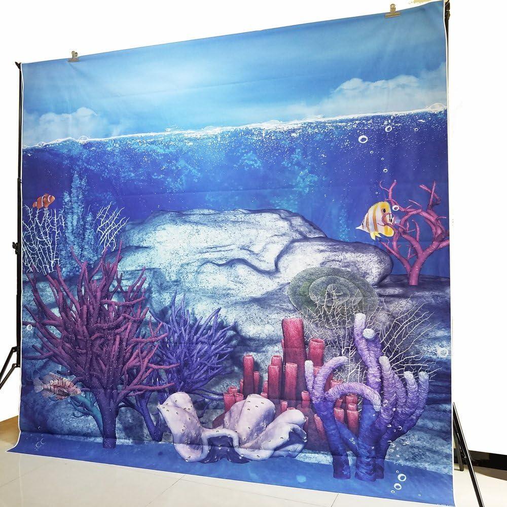 Unterwasserwelt Fotohintergründe Für Sommerpartys Kamera