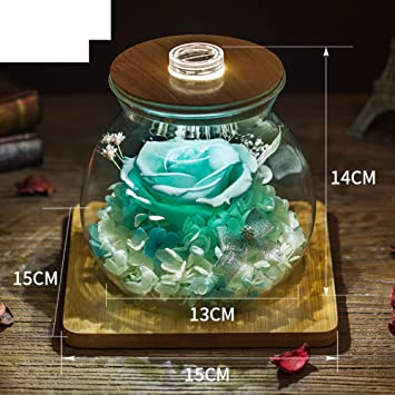 Kreative Weihnachtsgeschenke.Ewige Blume Geschenk Glaskasten Diy Rose Blumenornamente Kreative