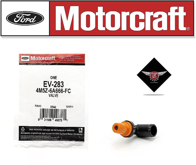 Amazon.com: TUNE UP KIT 2005 FORD FOCUS 2.0L L4 DG541 EV283 FA1688 FG986B FL910S SP492: Automotive