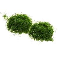 Segolike Foliage Lichen Moss Model Scenic Material for Mini Trees DIY Accessories Toy