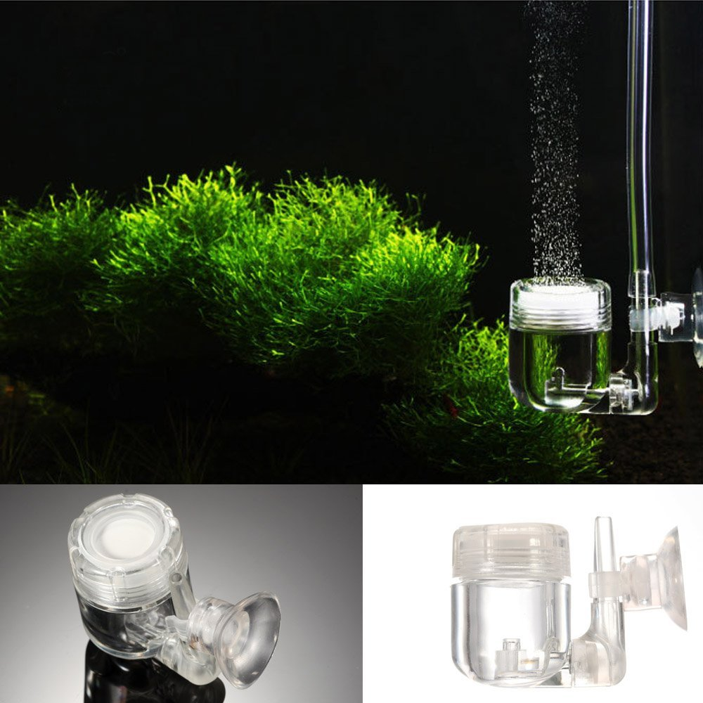 Amazon.com : acuarios 4 in 1 CO2 Diffuser Regulator Check Vavle Bubble Count U Shape Tube Sucker Aquarium Fish Tank Plant Accessory Tool : Everything Else