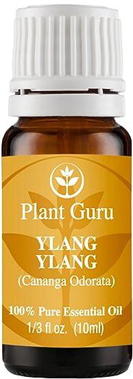 Plant Guru Ylang Ylang Oil