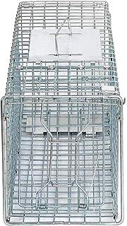 Amazon.com: Havahart - Trampa plegable (tamaño grande ...