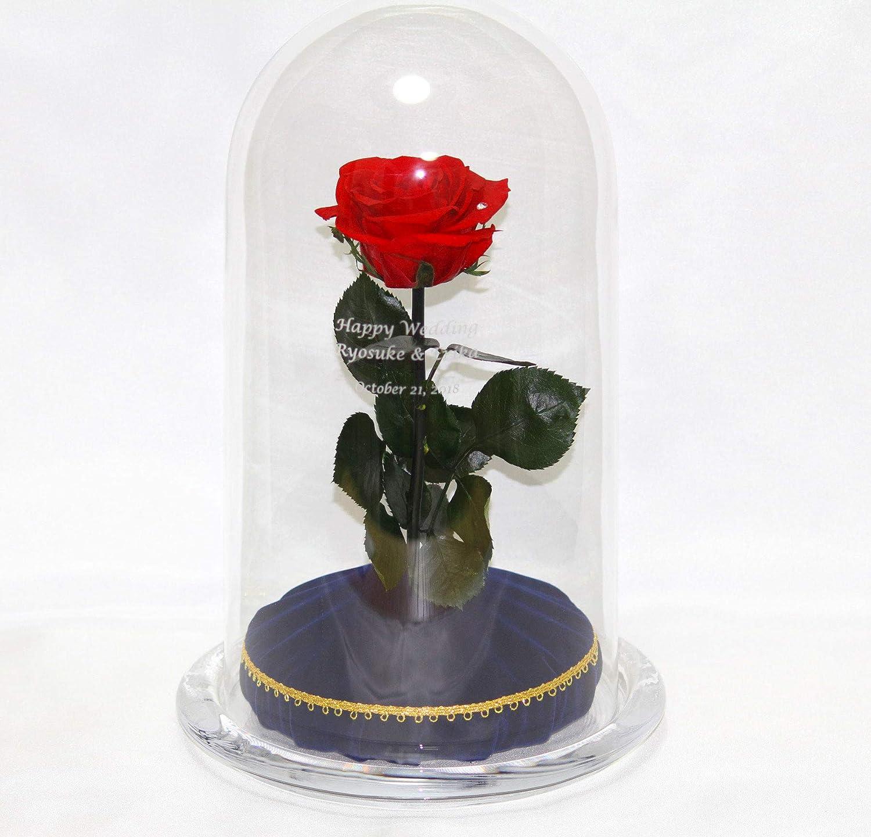 美女と野獣 魔法の薔薇HappyWishRose B00VP3JCP0