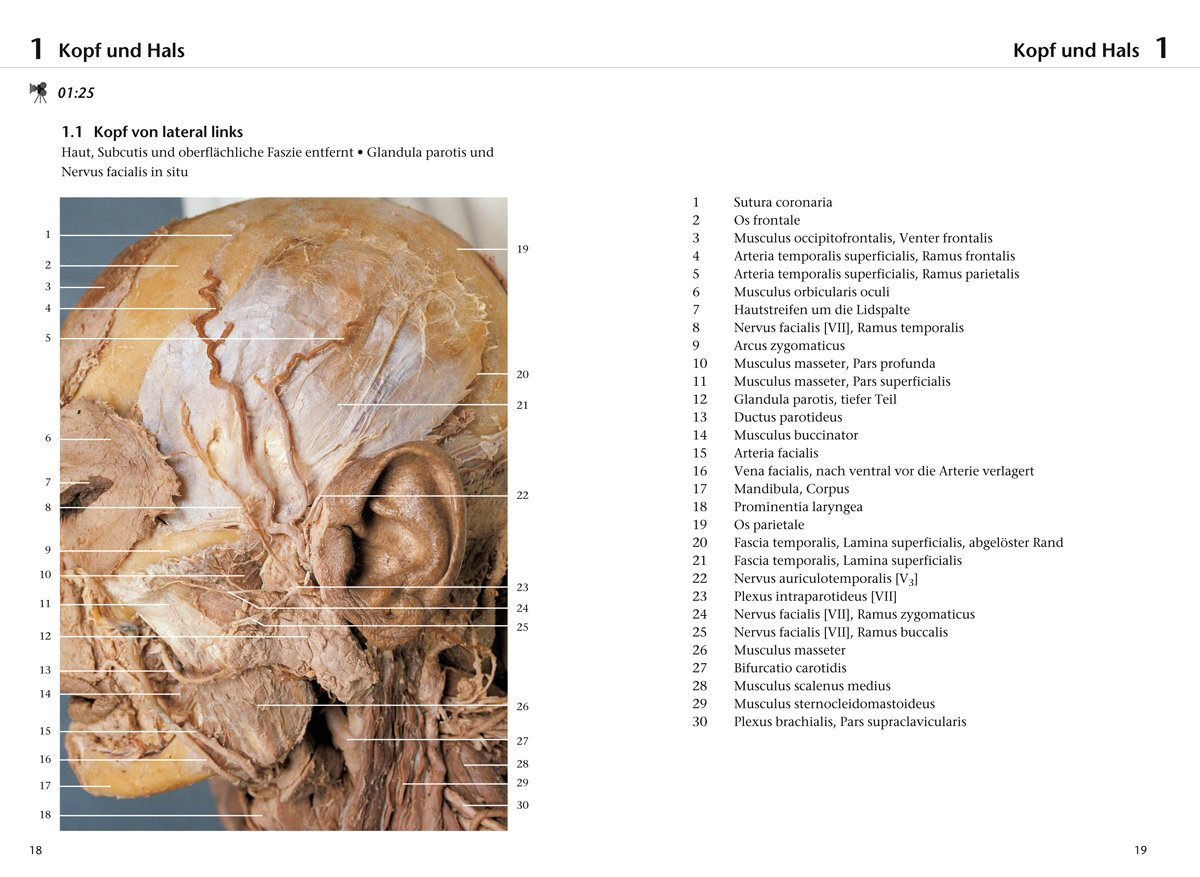 Fotoatlas Anatomie, m. DVD: Klaus-Peter Valerius: Amazon.com.au: Books