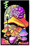 Alice in Wonderland Dreaming Flocked Blacklight Poster Art Print 23 x 34in by Poster Revolution