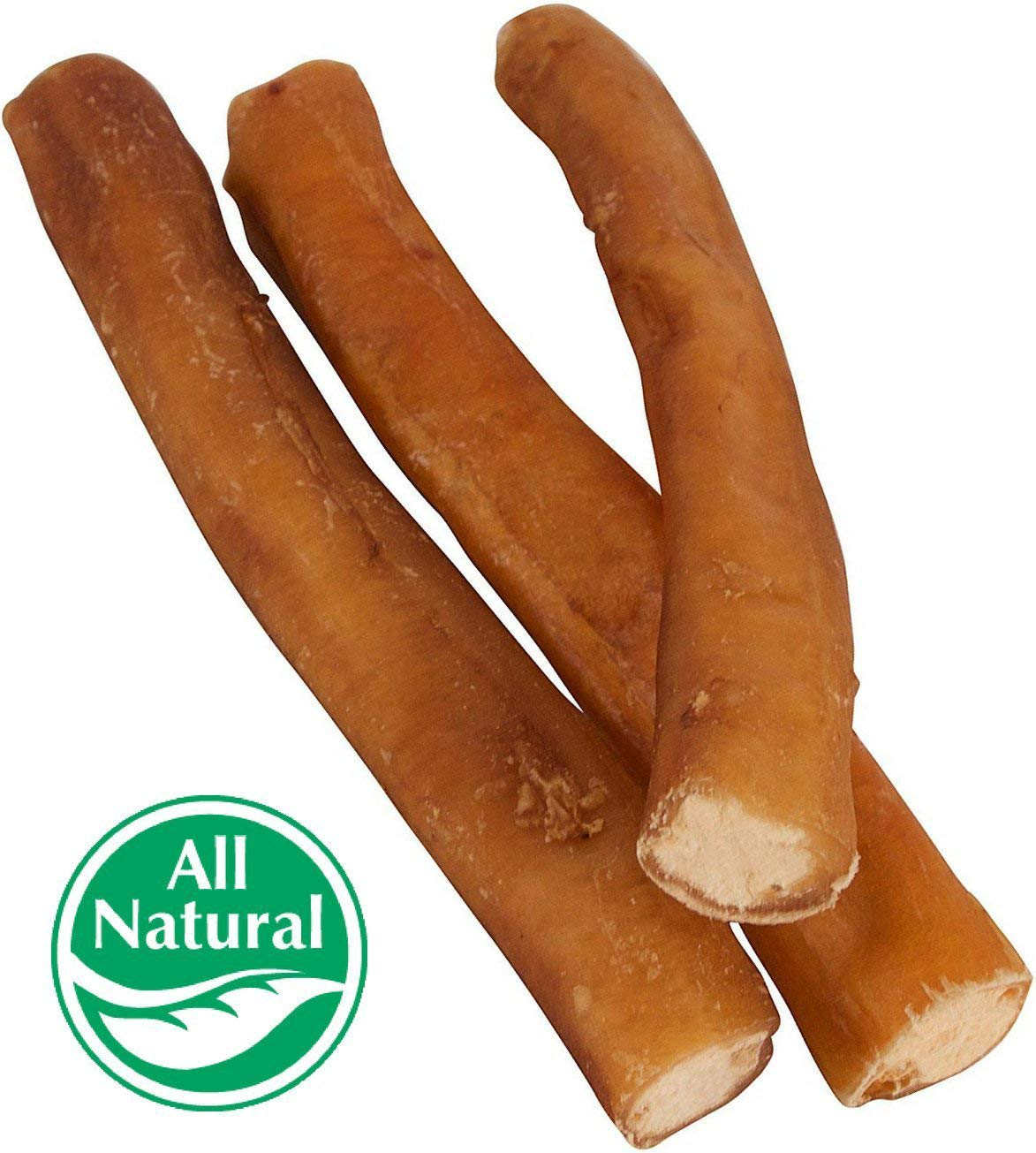 7'' Straight Bully Sticks for Dogs [X-LARGE THICKNESS] (50 Pack) All Natural & Odorless Bully Bones | Long Lasting Dog Chew Dental Treats | Best Thick Bullie Sticks for Dogs or Puppies | Grass-Fed Be