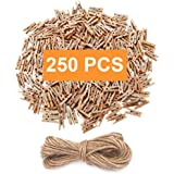 Mini Clothespins, Mini Natural Wooden Clothespins with Jute Twine, Multi-Function Clothespins Photo Paper Peg Pin Craft Clips, 250 PCS, Mini Size 1.0 inch for Home School Arts Crafts Decor by aHeemo