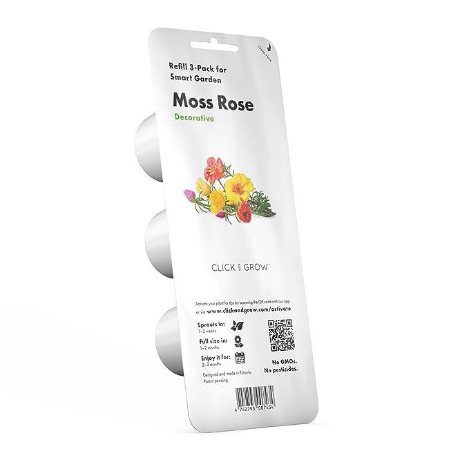 CLICK AND GROW Recarga Triple de Rosas para Smart Garden: Amazon ...