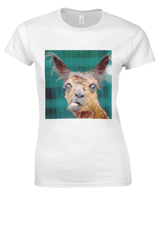 Amazon Ugly Llama Lama Funny Tumblr Fashion White Women T Shirt