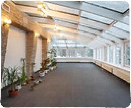 alfombrilla de ratón jardín de invierno vacío con el pequeño número de plantas y techo de cristal: Amazon.es: Electrónica