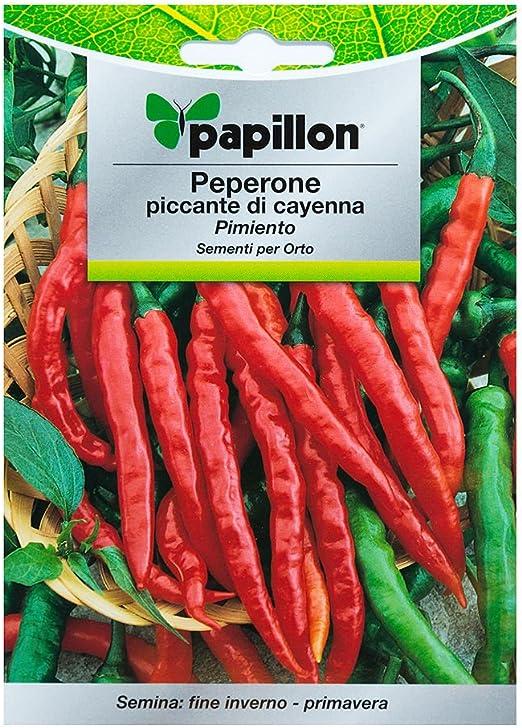 Semillas Pimiento Cayena Picante (1.5 Gramos): Amazon.es: Jardín
