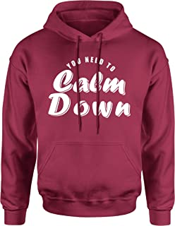 FerociTees You Need to Calm Down Swift Unisex Adult Hoodie