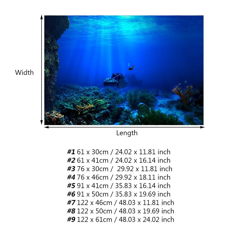 Acuario Fondo HD Submarino Coral Reef Fotos Papel Pintado Acuario Pescado MAR de Pared XXL Submarino Underwater Mundo decoración de Pared: Amazon.es: Hogar