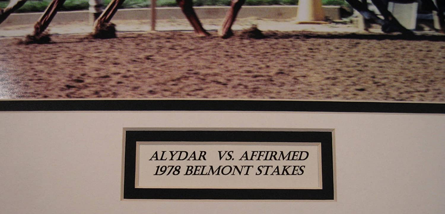 Amazon.com: affirmed alydar 1978 Belmont estacas Colchoneta ...