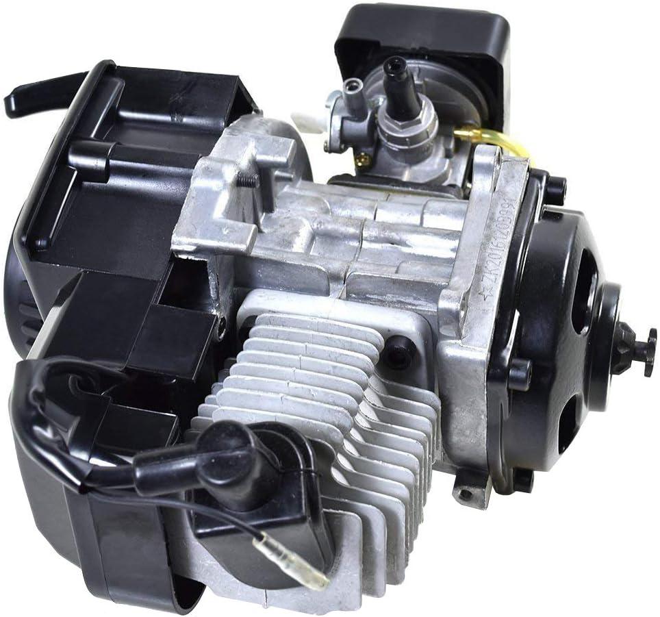 WPHMOTO 47cc 49cc 2-Stroke Engine Motor and 25H 136L Chain for Mini Pocket Bike Scooter Dirt Bikes ATV Quad Motorized Bicycle