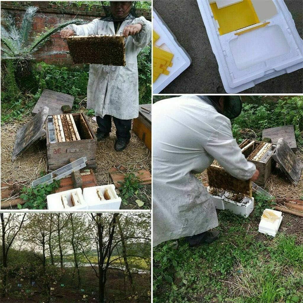 Auto Beekeeping Queen Rearing Box Supplies Beehive Foam Double layer Tool