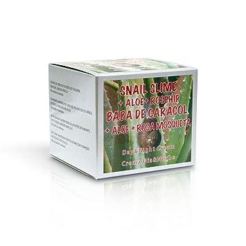 CREMA FACIAL BABA DE CARACOL -SPF 15- 100 ML CON ALOE VERA Y ROSA MOSQUETA: Amazon.es: Salud y cuidado personal