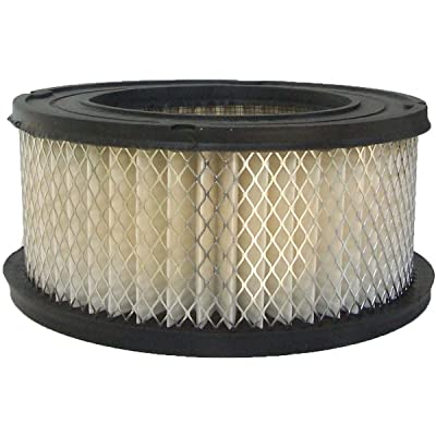Luber-finer AF102 Heavy Duty Air Filter: Automotive