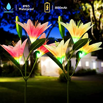 YUNLIGHTS Solar Garden Lights, 2Pcs Solar Garden Lily Flower Decorative Lights Outdoor Waterproof Stainless Steel Stake Solar Garden Lamp Multi-Color Emulated Flower Changing Decor for Yard Lawn Patio : Garden & Outdoor