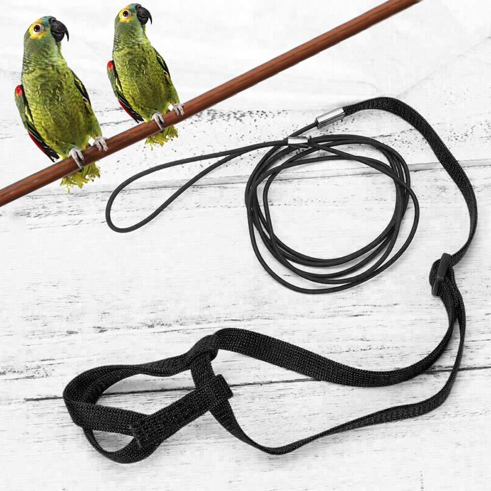 tracci/ón para Budgerigar Lovebird Cuerda de Entrenamiento para Mascotas para Exteriores peque/ño p/ájaro ASOCEA cacat/úa Mynah p/ájaro Correa antimordeduras Arn/és Ajustable para Loro