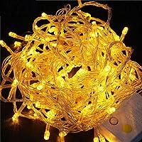 LED-string Fairy light vakantie Kerst Bruiloft decoratie AC220V Waterdichte buitenlichtslinger-Geel_5M 40LED's