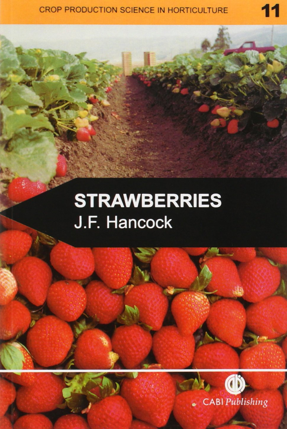 Strawberries (Agriculture)