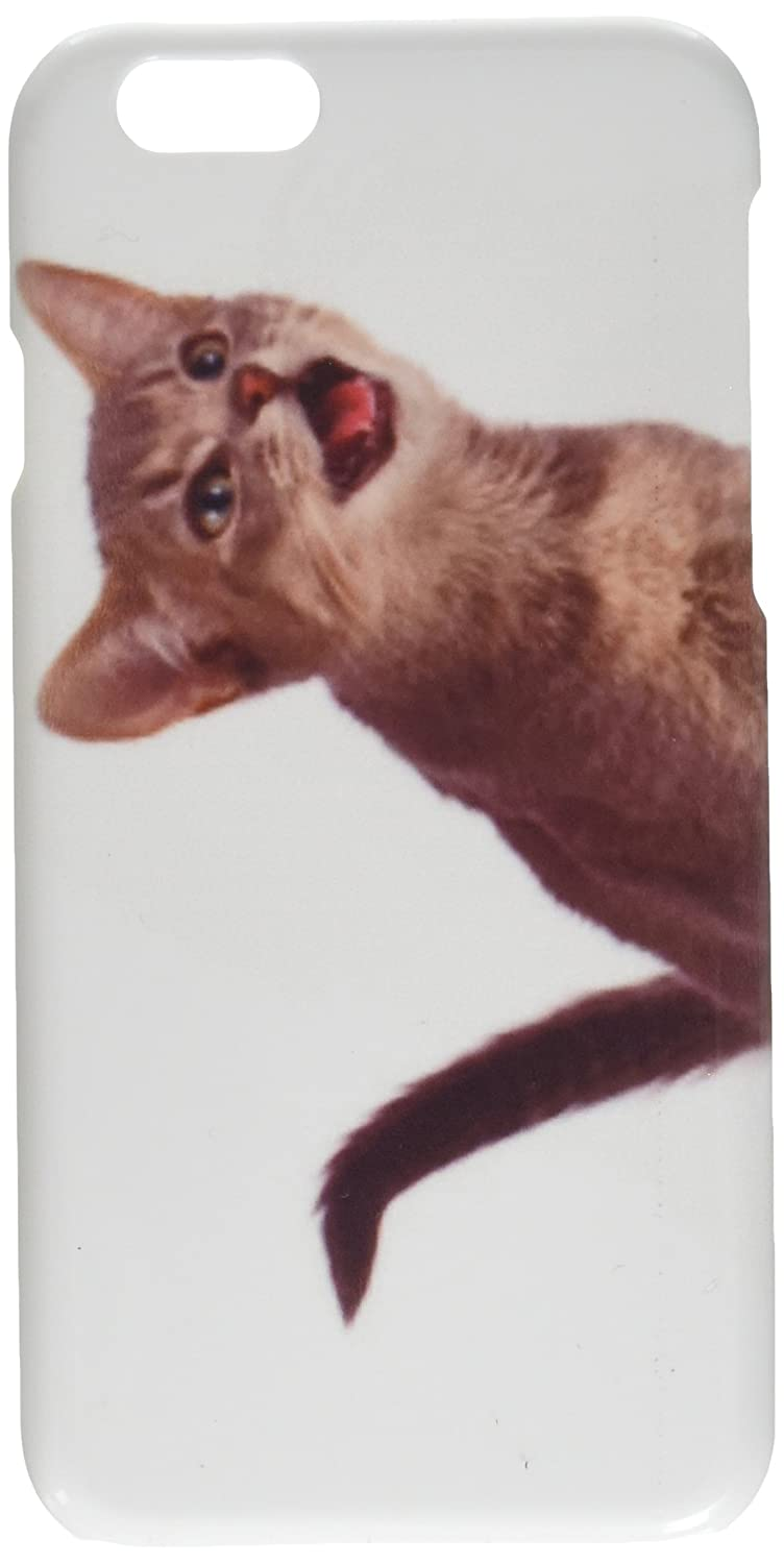 Get Here Cat With Phone Crying - Cat Picture