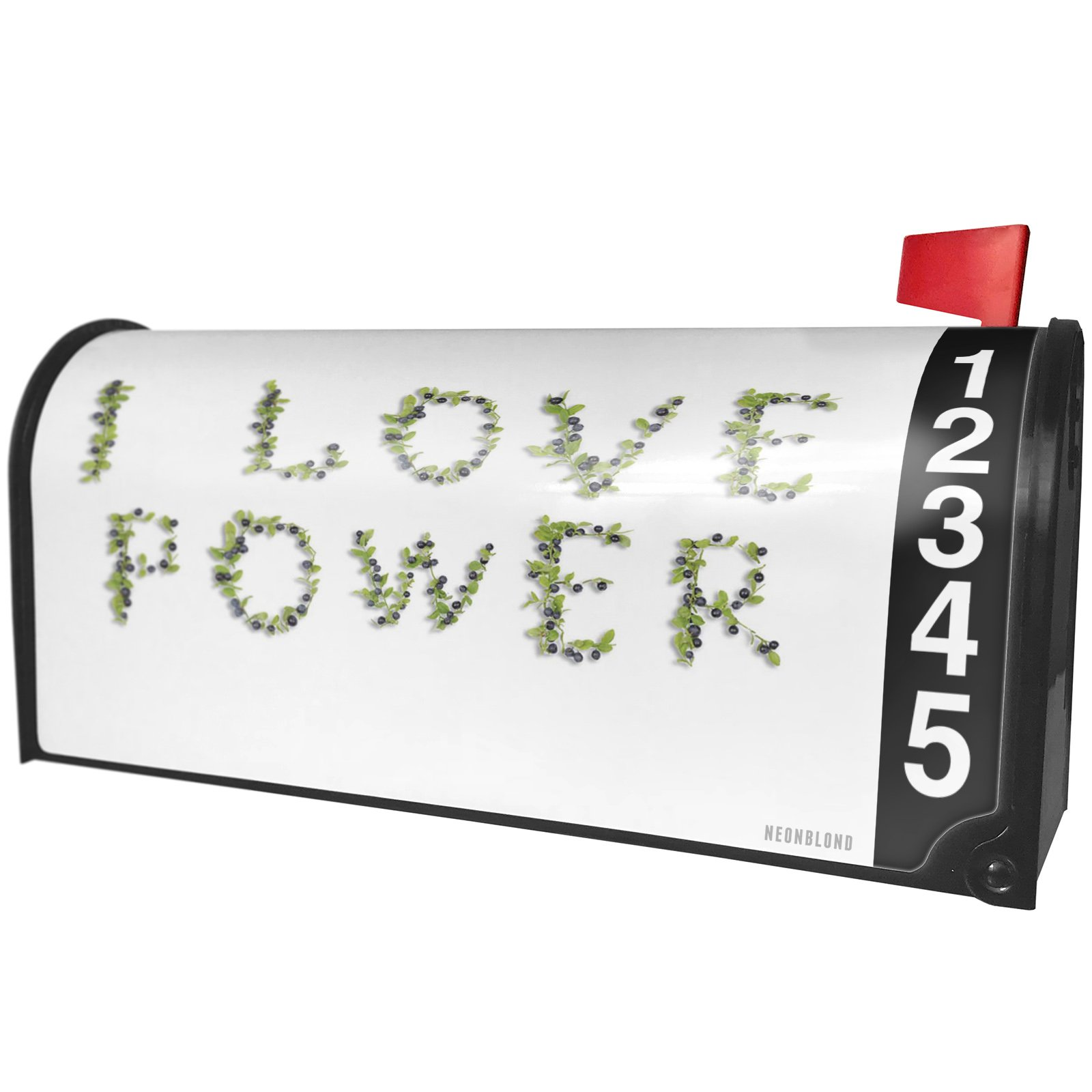 NEONBLOND I Love Power Fresh Blueberry Fruits Magnetic Mailbox Cover Custom Numbers