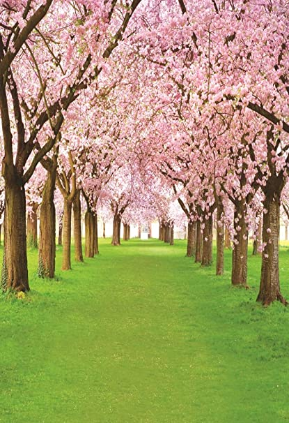 Aofoto 5x7ft Spring Cherry Flower Photography Backdrop Floral Blossom Tree Background Park Natural Scenery Green Grass