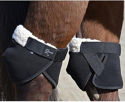 Intrepid International Hock Shield Displayschutz Ultra
