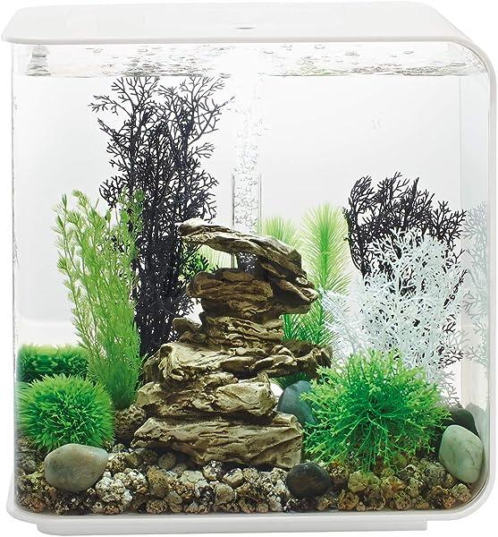 Aquarium-Steine