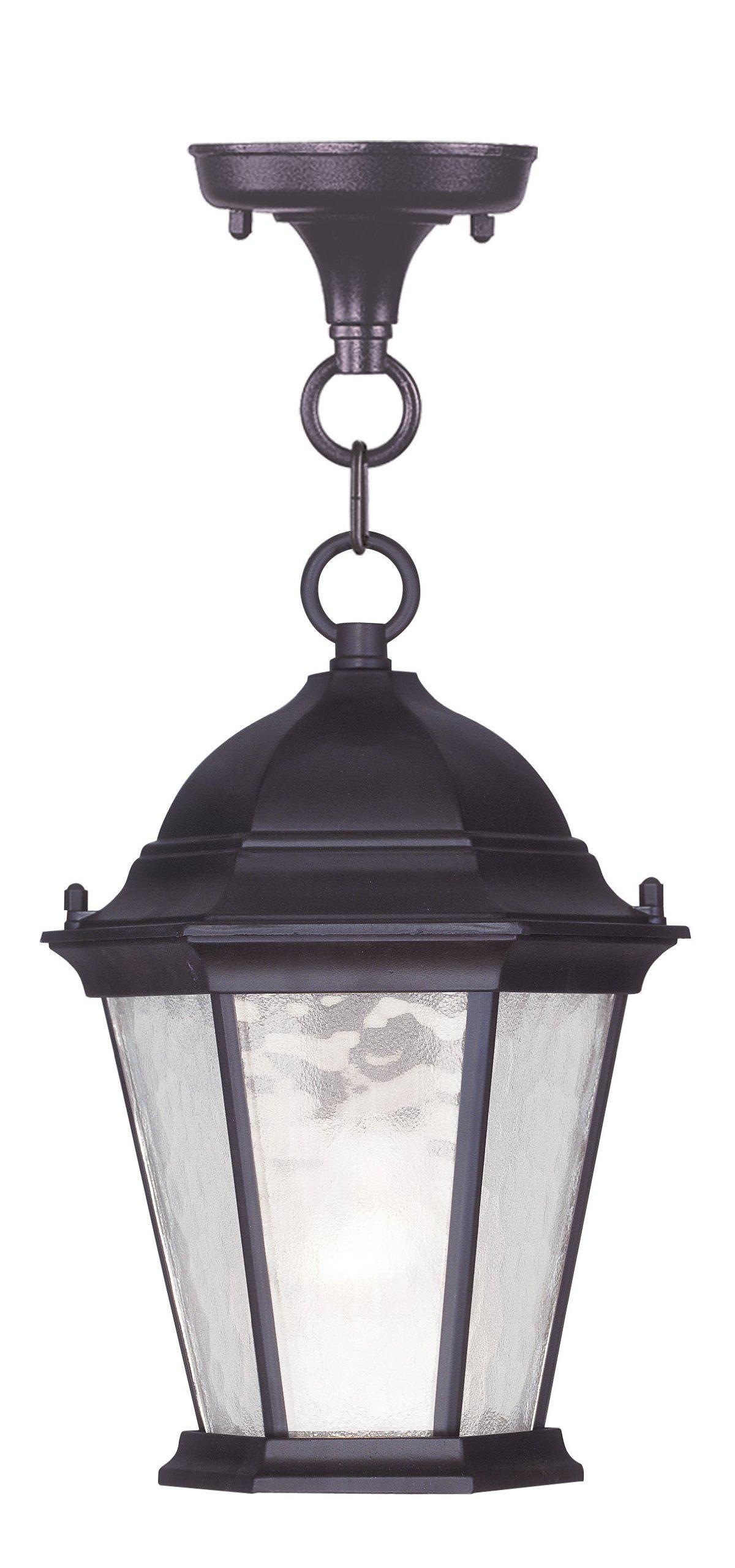 Livex Lighting 7559-07 Hamilton 1 Light Outdoor Hanging Lantern, Bronze