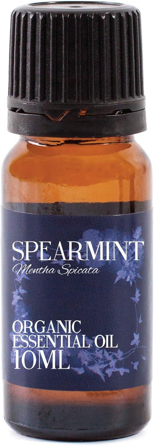 Mystic Moments | Aceite Esencial orgánico de Menta – 10 ml – 100% Puro