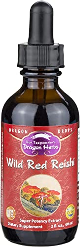 Dragon Herbs Wild Reishi Mushroom Super Potency Extract – 2 Fl Oz