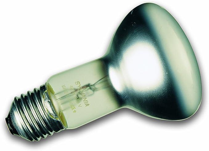 Lot de 10 ampoules /à r/éflecteur r80 e27 ampoule /à incandescence 60 w