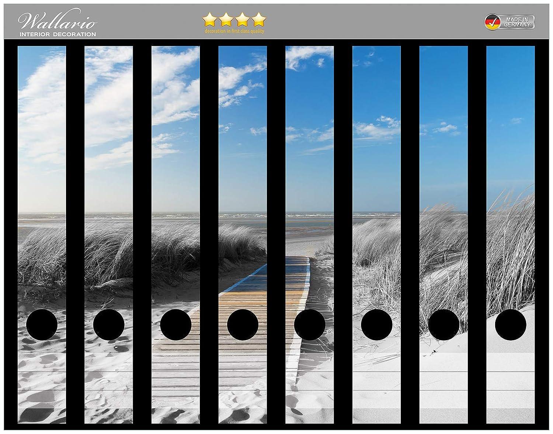 Gr/ö/ße 8 x 3,5 x 30 cm passend f/ür 8 schmale Ordnerr/ücken Wallario Ordnerr/ücken Sticker Auf dem Holzweg zum Strand in schwarz-wei/ß Optik in Premiumqualit/ät