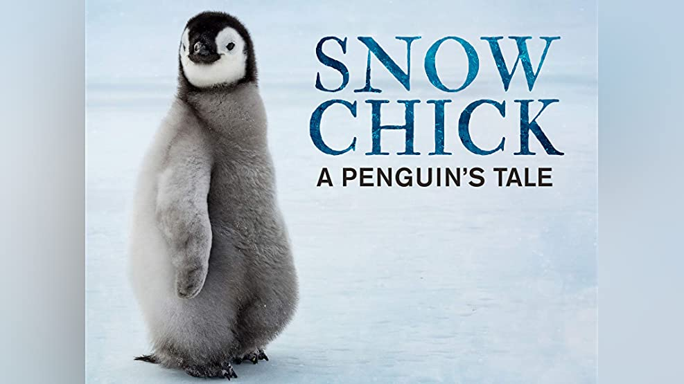 Snow Chick - A Penguin's Tale - Season 1