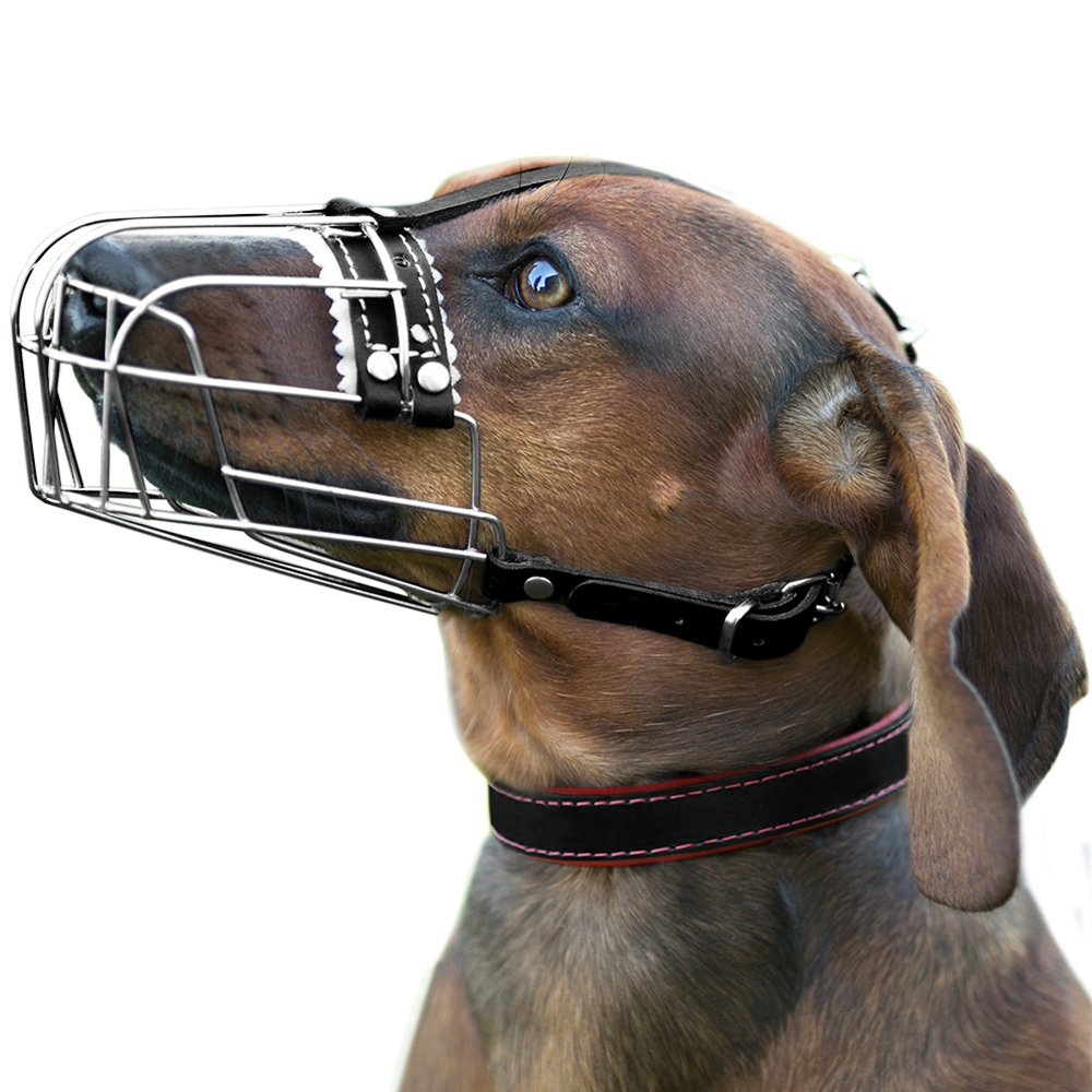 S BronzeDog Wire Dog Muzzle Dachshund Metal Basket with Adjustable Leather Straps Small (S)