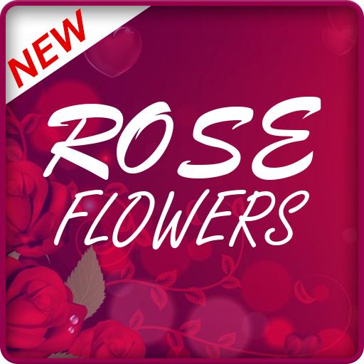 (NATURAL ROSE FLOWERS)