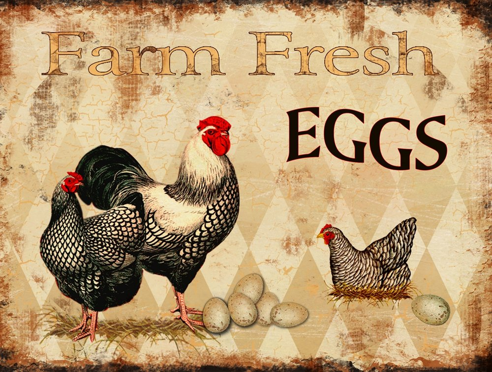 Barnyard Designs Farm Fresh Eggs Retro Vintage Tin Bar Sign Country Home Decor 13'' x 10''