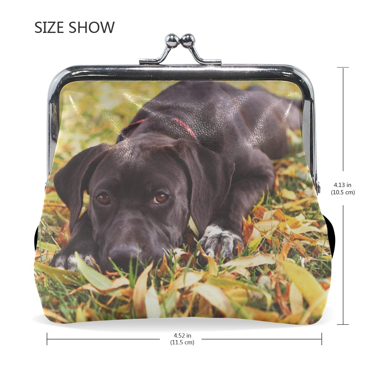 Rh Studio Coin Purse Clasp Closure Dog Retriever Face Grass Lie Print Wallet Exquisite Coin Pouch Girls Women Clutch Handbag Exquisite Gift