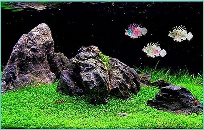 Vi.yo Adorno artificial plástico de los pescados del león para el ornamento del acuario de acuario size 11.5*7.5*3CM (Negro Naranja): Amazon.es: Productos ...
